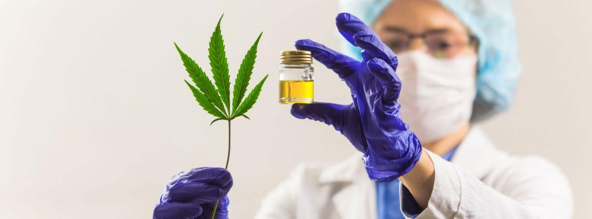 componentes basicos de la marihuana