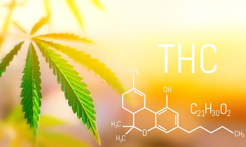componentes de la marihuana
