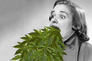 desintoxicarse de cannabis