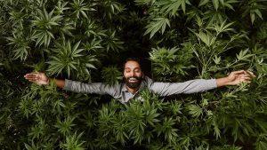 Cómo decirle a tus papás que fumas marihuana