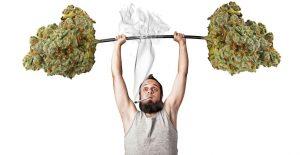 fumar hierba y hacer ejercicio